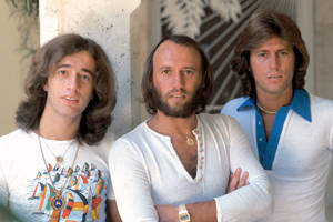 Bee Gees (the) (The Bee Gees)